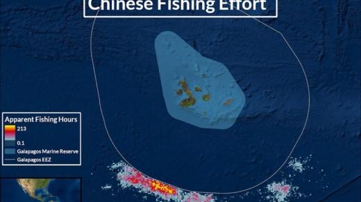 pesca china flota